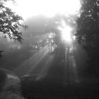Natur_9